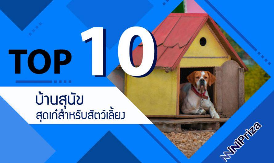 10 อันดับ บ้านสุนัข ที่เหมาะสำหรับสัตว์เลี้ยง หลากหลายดีไซน์