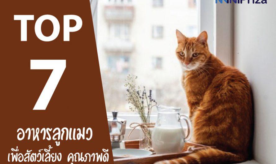 7 อันดับ อาหารลูกแมว เพื่อสัตว์เลี้ยง คุณภาพดี ราคาประหยัด ปี 2021