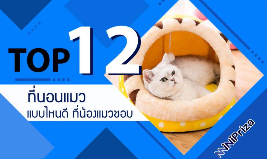 12 อันดับ ที่นอนแมว แบบไหนดี ที่น้องแมวชอบ ราคาถูก